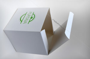 Snacks Packaging Boxes